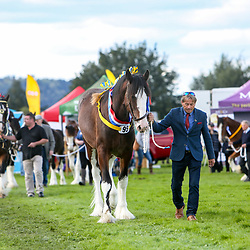 Keighley Show 2019
