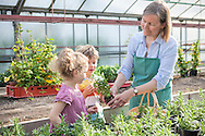 Plant Nursery, Boys, Girls, Women, Potted Plant, Giving, Gift,