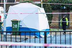 © Licensed to London News Pictures. 15/02/2018. London, UK. A forensics tent on Goldwing Close, East London, where a 17-year-old boy was fatally stabbed. Police and London Ambulance Service attended but the victim was pronounced dead at the scene. A murder investigation has been launched. Photo credit: Rob Pinney/LNP