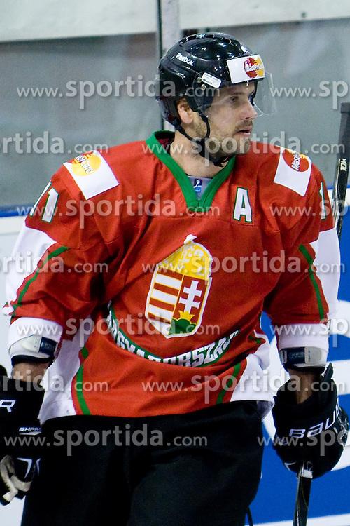 Balazs Ladanyi of Hun at IIHF Ice-hockey World Championships Division I Group B match between National teams of Great Britain and Hungary, on April 21, 2010, in Tivoli hall, Ljubljana, Slovenia. (Photo by Matic Klansek Velej / Sportida)