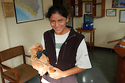 Peru - Wednesday, Dec 11 2002: Tourist Guide, Geraldine Coll Cardenez Liza stands in the Tambopata Research Centre field office in Puerto Maldonado. (Photo by Peter Horrell / http://www.peterhorrell.com)