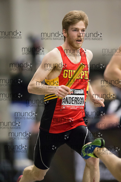 Windsor, Ontario ---2015-03-13--- Drew Anderson of Guelph competes in the 4X800 relay at the 2015 CIS Track and Field Championships in Windsor, Ontario, March 13, 2015.<br /> GEOFF ROBINS/ Mundo Sport Images