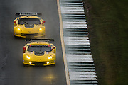 October 1- 3, 2015: Road Atlanta, Petit Le Mans 2015 - Magnussen, Garcia, Briscoe,  Corvette Racing C7.R GTLM, Oliver Gavin, Tommy Milner, Corvette Racing C7.R GTLM
