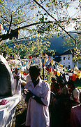 Worshipers at the Bo Tree in the area of the Dalada Maligawa in Kandy.