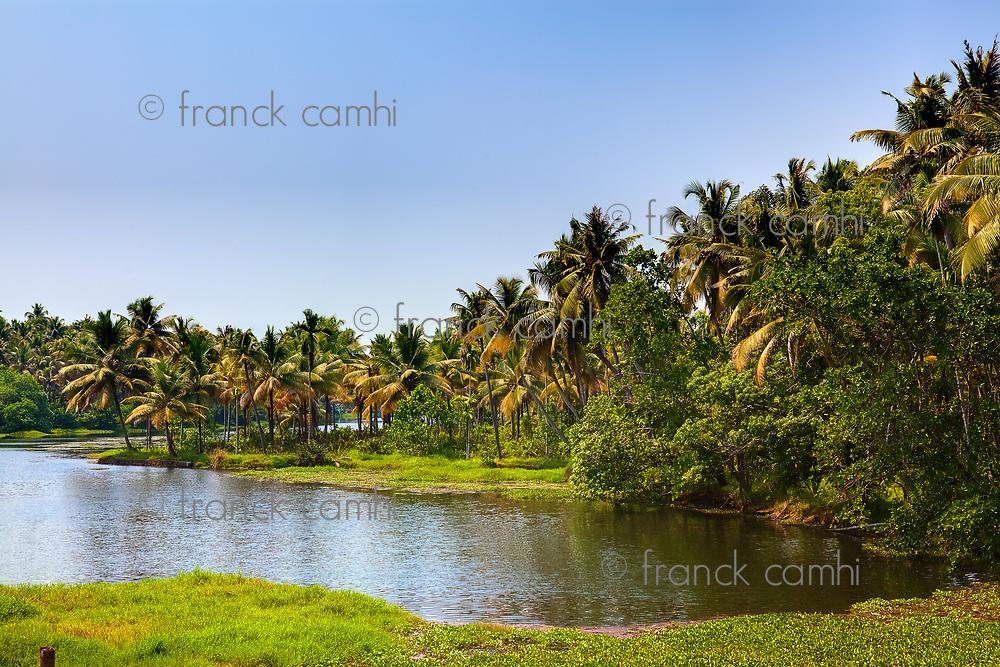 backwaters of cochin in Kerala state india