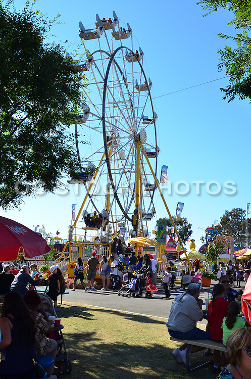 Summertime Fun At The OC Fair In Costa Mesa