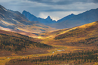North klondike River Valley displaying vibrant colors of autumn foliage, Tombstone Territorial Park Yukon Canada