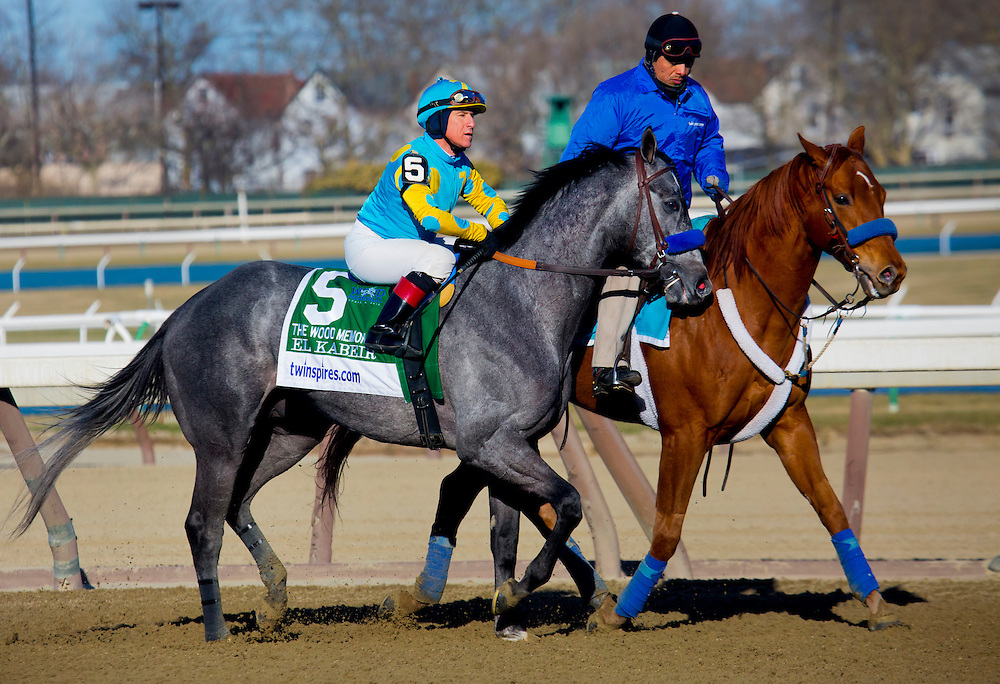 "(5) This is a Series of 11 photos, beginning with the post parade culminating with the stretch drive for the 2015 Wood Memorial. The race was won by ""Frosted"", number 4, a grey horse with jockey Joel Rosario aboard in blue silks."