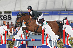 Pender Michael, IRL, HHS Vancouver<br /> Final 5 years  old Horses<br /> Zangersheide FEI World Breeding Jumping Championship 2018<br /> © Hippo Foto - Julien Counet