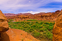 Hiking in Lathrop Canyon, Colorado River, Canyonlands National Park, Utah, USA
