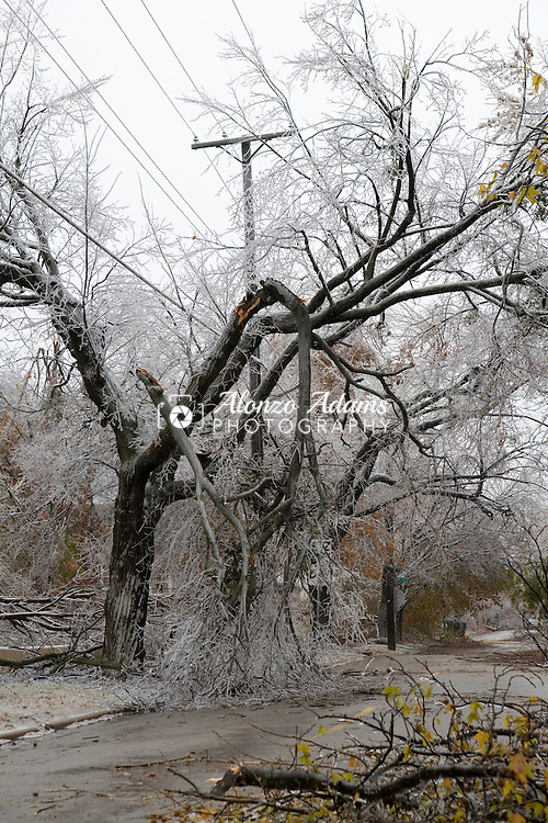 OKLAHOMA CITY, OK. - DECEMBER 11,2007:  Freezing rain caused a trees to fall onto Hudson near NW 30th street in Oklahoma City, Oklahoma on Tuesday, Dec. 11, 2007.  (Photo by Alonzo J. Adams)