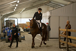 Van der Meer Patrick, NED, First Apple<br /> Jumping Mechelen 2017<br /> © Sharon Vandeput<br /> 27/12/17