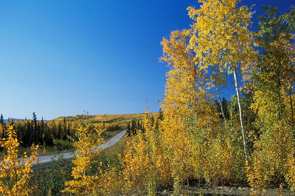 White Mountains, BEI, Livengood, Alaska, USA