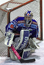 Bernhard Starkbaum (29) at ice hockey match Acroni Jesencie vs EC Pasut VSV. in EBEL League,  on November 23, 2008 in Arena Podmezaklja, Jesenice, Slovenia. (Photo by Vid Ponikvar / Sportida)