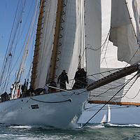 Eleonora, Eleanora, J P Morgan Round the island Race 2015