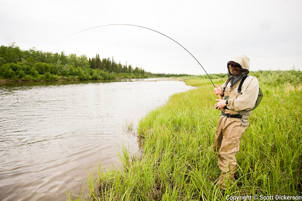 Anders Gustafson, wearing a mosquito net, fights a sockeye salmon on the Mulchatna River in Bristol Bay, Alaska.
