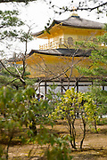 Scenes at Kinkakuji Temple (Golden Pavilion), the most popular tourist attraction in Japan.