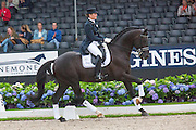 Mara de Vries - Black Painted Zeldenrust<br /> Longines FEI/WBFSH World Breeding Dressage Championships for Young Horses 2016<br /> © DigiShots