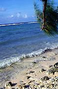 Seashore and sea, Grand Cayman, Cayman Islands,