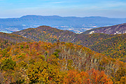 Autumn colors with Massanutten Mountain in the background