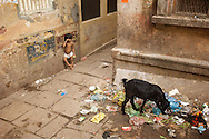 Unfortunately, poverty is everywhere in India.  Around every corner can be another sad site.