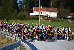 The peloton chase down the lone leader during Ladies Tour of Norway 2019 - Stage 3, a 125 km road race from Moss to Halden, Norway on August 24, 2019. Photo by Sean Robinson/velofocus.com