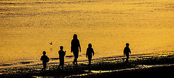 a family stroll along the beach on the Cromarty Firth at Sunset.<br /> <br /> (c) Andrew Wilson | Edinburgh Elite media