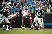 January 3, 2016: Carolina Panthers vs Tampa Bay Buccaneers. Tolbert, Mike