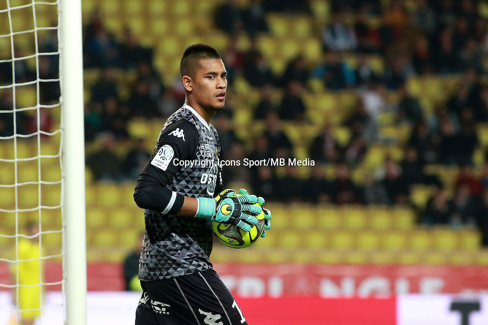 AREOLA ALPHONSE - 13.03.2015 -   Monaco / Bastia -  29eme journee de Ligue 1 <br />