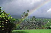 Rainbow, Pi'ilani Heiau, Hana Coast, Maui, Hawaii<br />