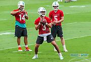 Miami Dolphins quarterbacks Josh Rosen(3) Ryan Fitzpatrick(14) and Jake Rudock(5) during Minicamp at the Baptist Health Training Facility at Nova Southeastern University, Wednesday, June 5, 2019 in Davie, Fla. (Kim Hukari/Image of Sport)