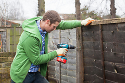 Repairing a wooden fence panels using a drill.
