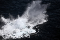 ATLANTIC OCEAN 2NOV14 - A Humpback whale slaps its fluke in the Atlantic Ocean off the coast of Guinea.<br /> <br /> <br /> <br /> jre/Photo by Jiri Rezac / Greenpeace<br /> <br /> <br /> <br /> <br /> © Jiri Rezac 2014