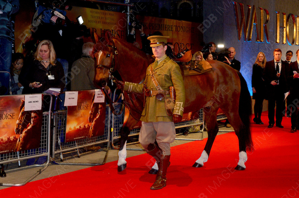 08.JANUARY.2012. LONDON<br /> <br /> JOEY ARRIVES AT THE WAR HORSE PREMIERE HELD AT THE ODEON LEICESTER SQUARE IN LONDON.<br /> <br /> BYLINE: EDBIMAGEARCHIVE.COM<br /> <br /> *THIS IMAGE IS STRICTLY FOR UK NEWSPAPERS AND MAGAZINES ONLY*<br /> *FOR WORLD WIDE SALES AND WEB USE PLEASE CONTACT EDBIMAGEARCHIVE - 0208 954 5968*