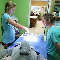 A.K. Aguirre shows Ivy Edwards, 10, how to perform animal surgery on a giant suffed elephant Saturday at Tupleo Small Animal Hospita's open house