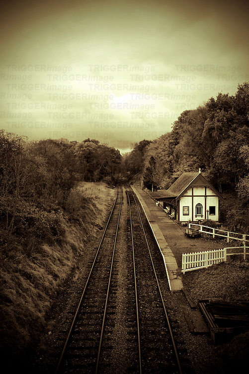 A small country train station surrounded by trees
