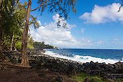 Puna Coast, The Big Island of Hawaii