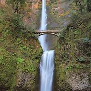 Multnomah Waterfalls - Columbia Gorge, Oregon