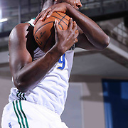 Reno Bighorns Forward Jordan Hamilton (9) pulls down a rebound in the second half of a NBA D-league regular season basketball game between the Delaware 87ers and the Reno Bighorns (Sacramento Kings), Tuesday, Feb. 10, 2015 at The Bob Carpenter Sports Convocation Center in Newark, DEL