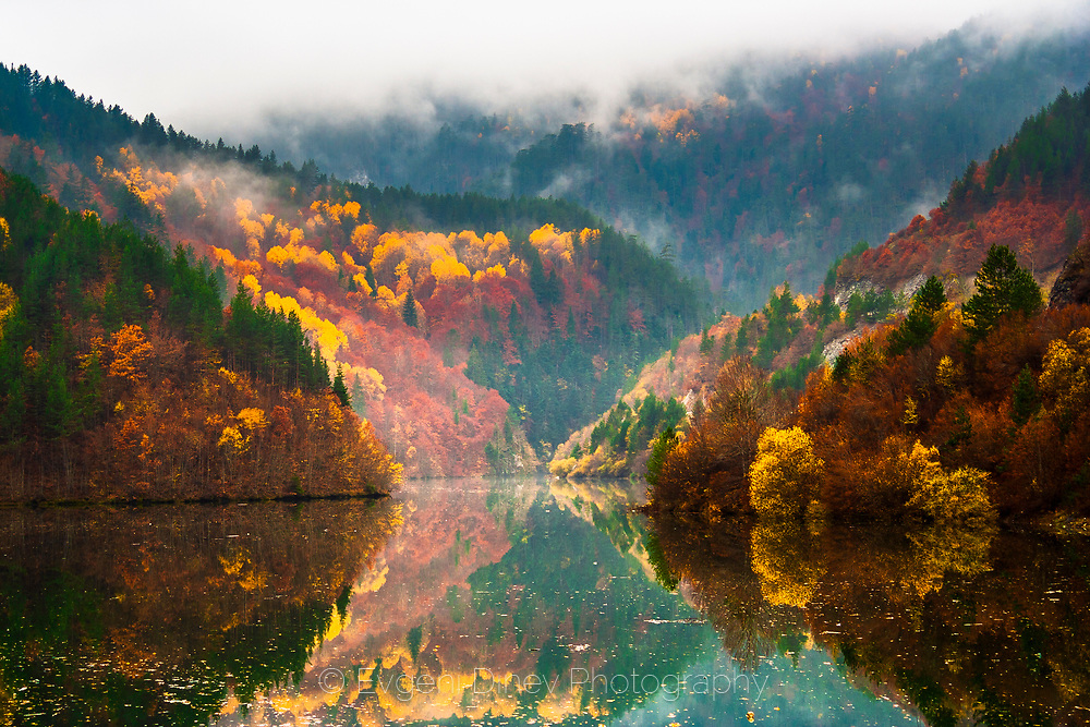Amazing reflections of a misty autumn forest in a lake