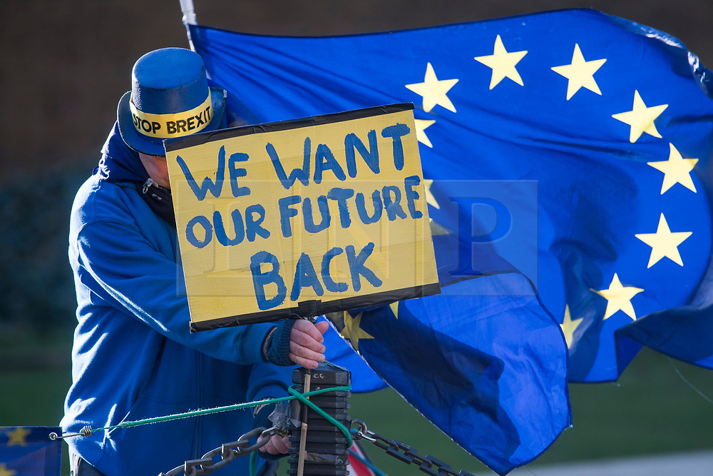 © Licensed to London News Pictures. 31/01/2018. London, UK. A protester flying the EU flag outside the House of Parliament in London in protest at Brexit and the UK's decision to leave the EU.Photo credit: Ben Cawthra/LNP