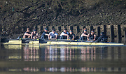 Putney, London,  Tideway Week, Championship Course. River Thames,  Oxford UBC. Bow: William Warr , 2: Matthew O'Leary, 3: Oliver Cook 4: Joshua Bugaski, 5: Olivier Siegelaar, 6: Michael DiSanto, 7: James Cook, Stroke: Vassilis Ragoussis and Cox: Sam Collier Oxford UBC<br /> Tuesday  28/03/2017<br /> [Mandatory Credit; Credit: Peter Spurrier/Intersport Images.com ]