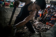 Saphan Pla fish market in Bangkok, some Burmese migrant are working illegally. Saphan Pla, marché aux poissons à Bangkok, des migrants birmans travaillent illégalement.