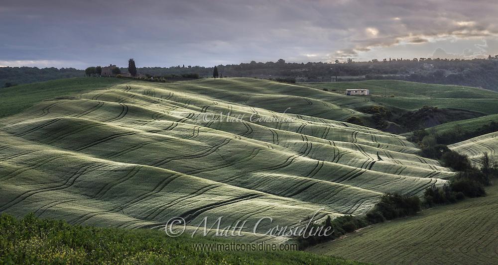 Rolling Tuscan hills with interesting light. (Photo by Travel Photographer Matt Considine)