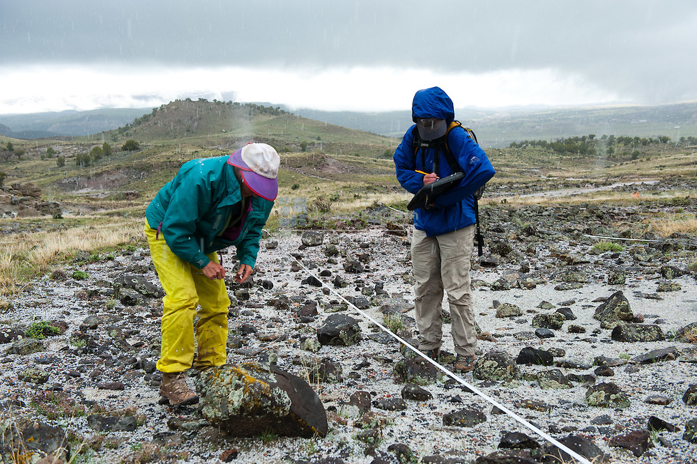 Research Team at De Beque, Colorado site to research Sclerocactus Glaucus. Michell DePrenger-Levin, Mary Goshorn, Lee Cassin and Larry Allison . Sclerocactus glaucus.