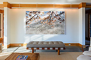 Floating Blossoms With Branches<br />