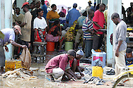 Dar es Salaam, Tanzania, fish market.