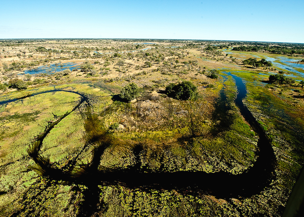 aerial of the OKAVANGO flood plain