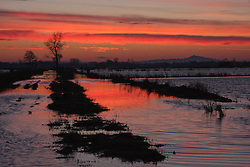 © Licensed to London News Pictures. 21/01/2014. Somerset, UK  Sunrise on the Somerset Levels this morning 21 January 2014 looking towards Glastonbury Tor. Photo credit : Roger Fry/LNP