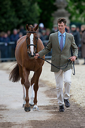 Fox Pitt William, (GBR), Chilli Morning<br /> First Horse Inspection - Mitsubishi Motors Badminton Horse Trials <br /> Badminton 2015